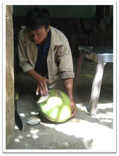 Hình (LĐV): Thử dừa, nếu vừa đủ cơm thì quay lên cây hái tiếp