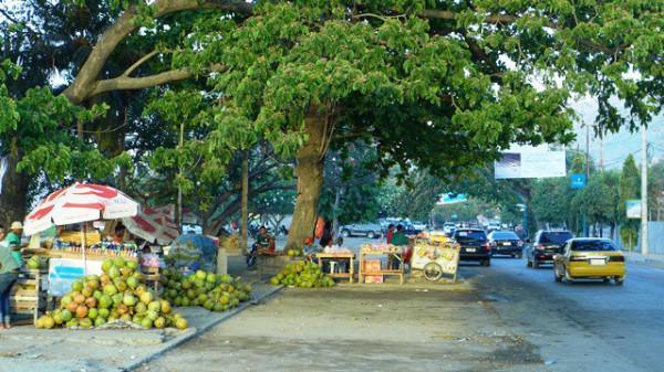 Phố nghèo Dili, Ảnh: HM