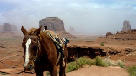 Wild West. Ảnh mang tính minh họa, nguồn www.trekearth.com