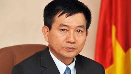Đại sứ Việt Nam tại Thổ Nhĩ Kỳ, Nguyễn Thế Cường