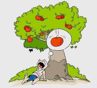 Bao giờ rụng quả ơi?