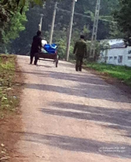 Ông Cù Huy Hà Vũ đẩy xe bò chờ đổ tiếp tế về phong giam ở trại tù Cẩm Thủy, Thanh Hóa ngày 24/2/2012