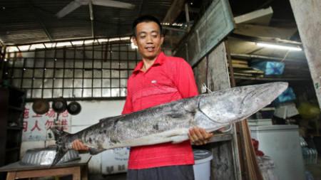 Ngư dân Trung Quốc đã định cư trên quần đảo Hoàng Sa