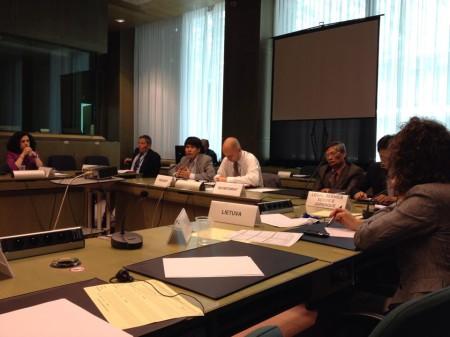Blogger Phạm Lê Vương Các đang trình bày về tình hình nhân quyền Việt Nam tại Nhóm làm việc về Nhân quyền của Liên minh châu Âu – EU tại trụ sở cơ quan này ở Brussels (Bỉ) ngày 25-6-2014.