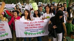 Người Hà Nội tuần hành vì cây xanh