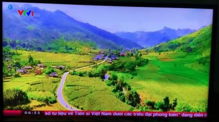 Hình ảnh VTV sử dụng của anh Tuấn