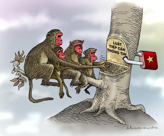 Luật tiếp cận thông tin của khỉ đít đỏ Ba  Đình