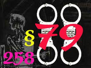 Những điều lệ đã khiến nhiều nhà hoạt động vào tù