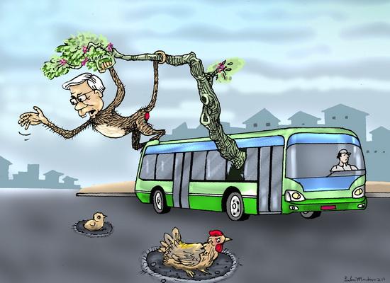 Con khỉ già đầu bạc đi xe buýt chúc tết nhân dân
