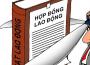 Thực trạng của người lao động Việt Nam trong và ngoài nước