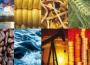 Giá cả hàng hóa toàn cầu biến động dữ dội