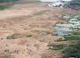 Mùa cá bột sông Hồng